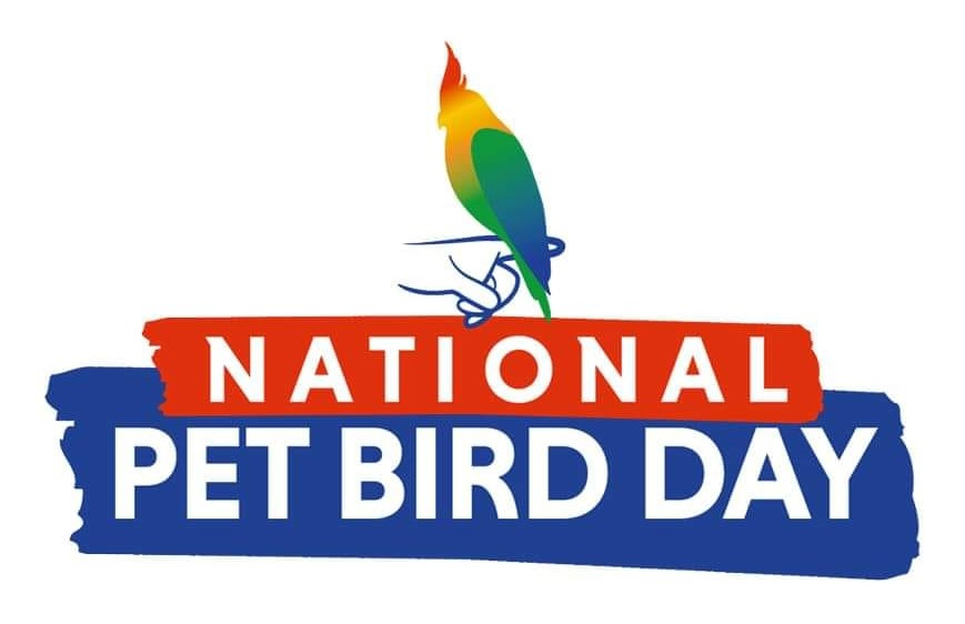 September 17th, National Pet Bird Day